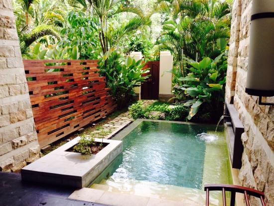 Private plunge pool picture of sofitel bali nusa dua - Jacuzzi de jardin ...
