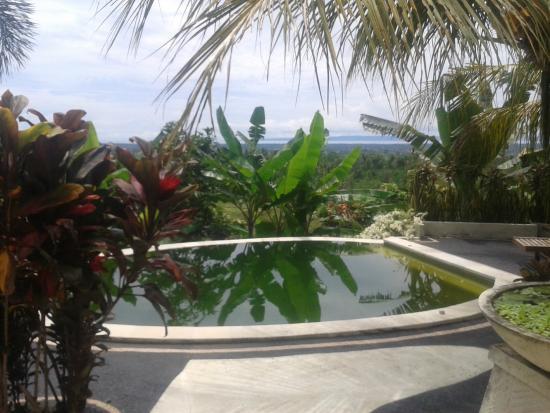 Pool View Picture Of West Bali Villas Umasari Resort Jembrana Tripadvisor