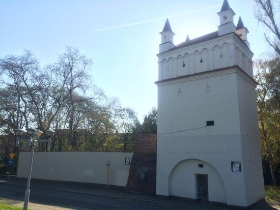 Raciborz, Polonia: Tower (Baszta)
