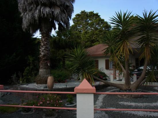 Tealmere Grove B&B: The B&B (street view)
