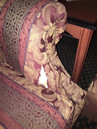 Embassy Suites by Hilton Detroit - Livonia/Novi: Torn couch in guest room