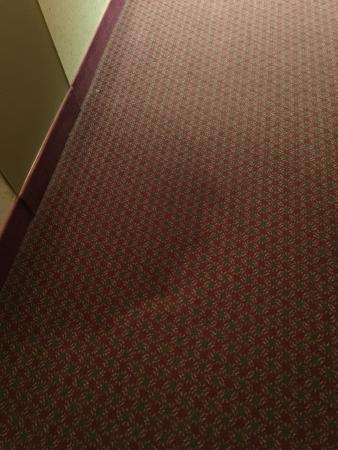 Ramada St Joseph: Stains on the carpet