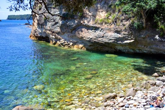 gemstone bay picture of cathedral cove walk hahei
