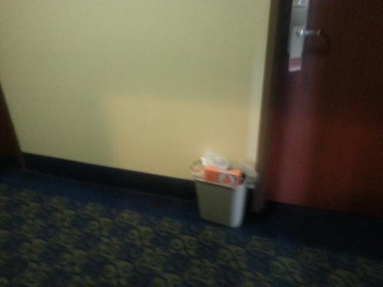 Red Roof Inn Panama City: Garbage
