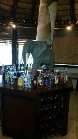 Bayala Game Lodge: Bar
