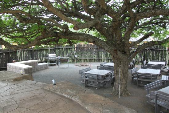 Bayala Game Lodge : Bouma