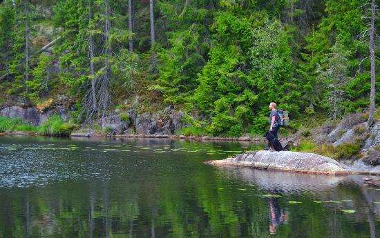 Varmland County, Swedia: Tresticklan Nationalpark