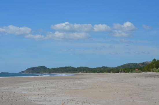 Melting Elefante: Beach - Playa