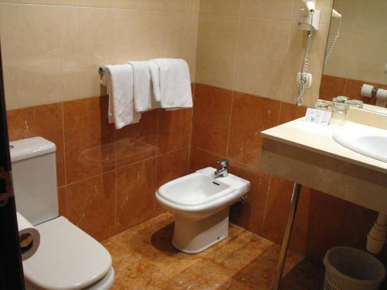 Andia Hotel Pamplona : UNA PARTE DEL BAÑO