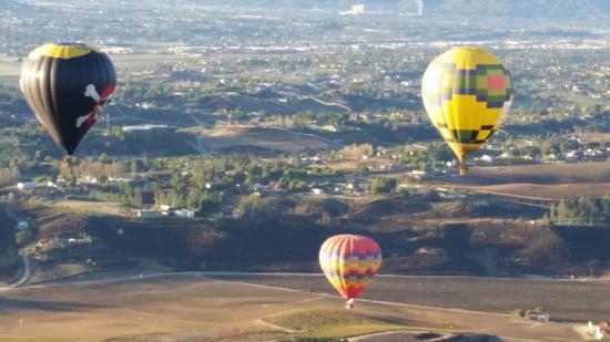 A Grape Escape Balloon Adventure : Cheers to the morning!