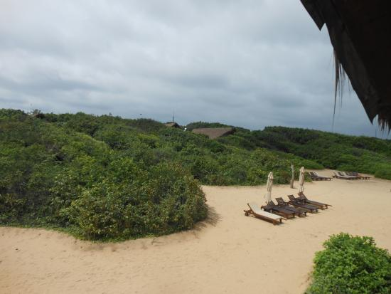 View Of The Beach Cabin From Higher Elevation Picture Of Jungle - Higher elevation
