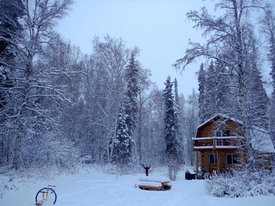Riverbend Log Cabins & Cottage Rentals : The Cabin