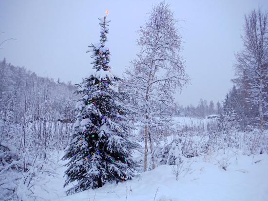 Riverbend Log Cabins & Cottage Rentals : Frozen River