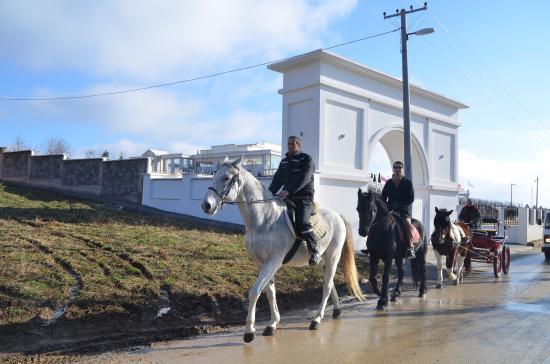 Gnjilane, Kosovo: Vali Ranch