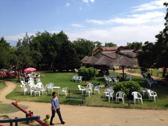 Hosteria El Copihue: Jardines