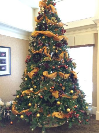 Homewood Suites by Hilton Albany: Christmas Tree in dining area