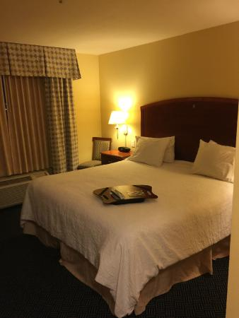 Hampton Inn Logan: Bed