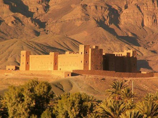 Marrakech Tours Specialist - Day Tours