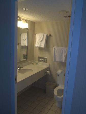 Holiday Inn Buffalo Downtown: Bathroom