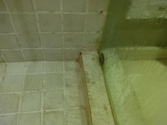 This is how we found the condition of the shower at the Wesley