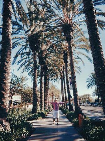 Ramada Los Angeles/Downtown West: Localização é bonita