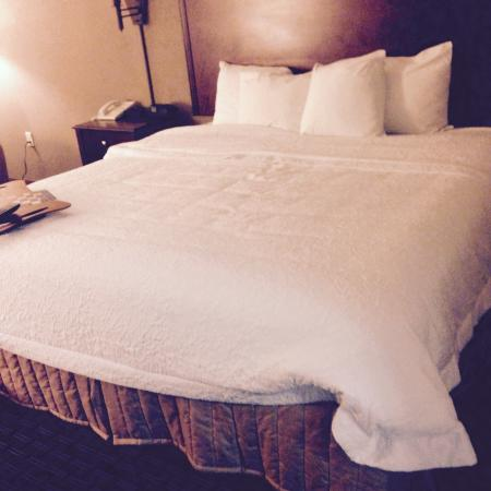 Hampton Inn Oxford-Anniston: King Room
