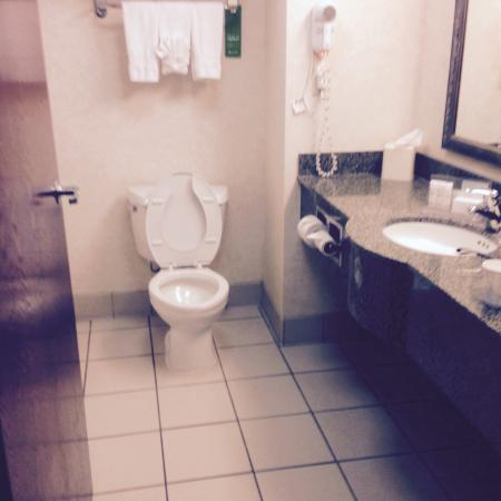 Hampton Inn Oxford-Anniston: Bathroom