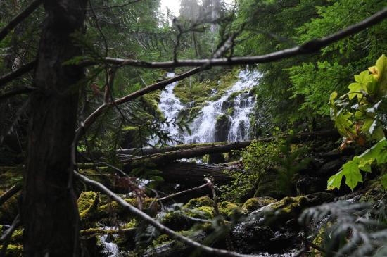 Sisters, Oregon: Proxy Falls