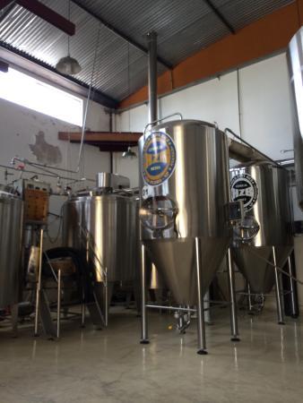 Micro Cervejaria Halb Zehn Bier