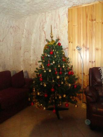 Down to Erth B &B: Christmas Tree up & ready for guests