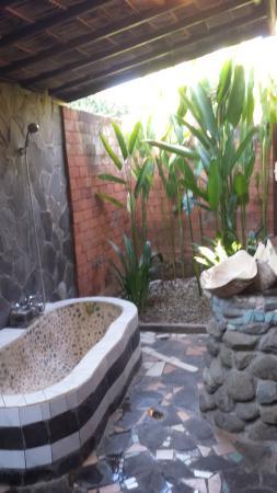 1000 Dream Bungalow - Lovina: bath