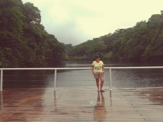 Amazon Jungle Palace : Fim do hotel