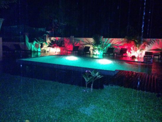 Botanica Guest House : soirée bucolique au bord de la piscine