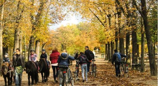 Paris, Frankrig: Fietsen in Parijs - Park du Luxembourg