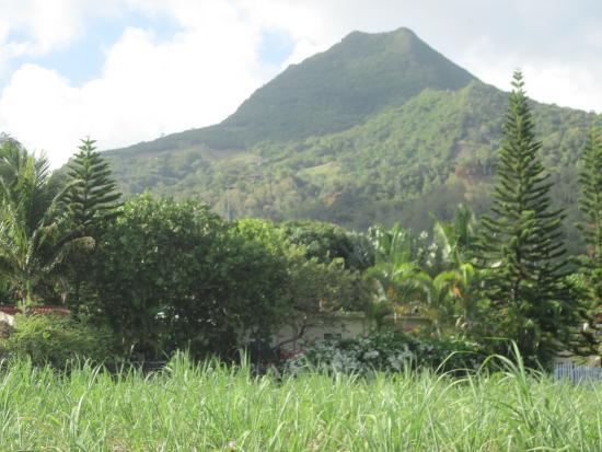 Casa Tia, Bois des Amourettes, Mauritius