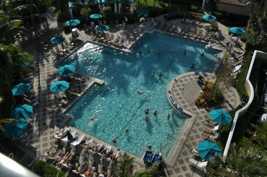 Marriott S Ocean Pointe Cobia Pool