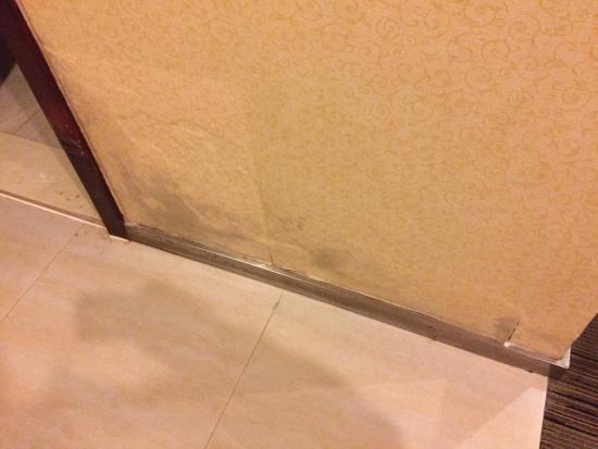 Huashan International Hotel: Mold and mildew