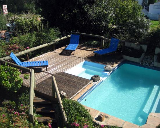 At The Woods Guest House: Pool - from Breakfast verandah