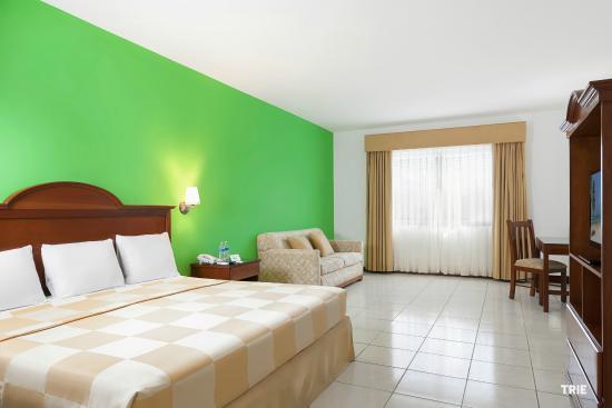 Hotel Costa Maya Inn : Habitación Junior Suite con 1 cama king y 1 sofá cama tamaño matrimonial