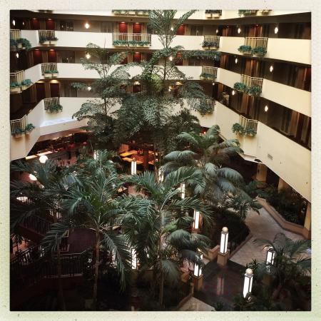 Embassy Suites by Hilton Tampa-USF/Near Busch Gardens: Birds eye of the beautiful lobby