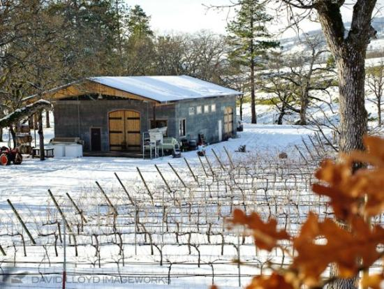 Lyle, Вашингтон: Winter at the winery