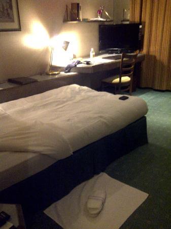 Hotel Al Khozama: rooms are simple