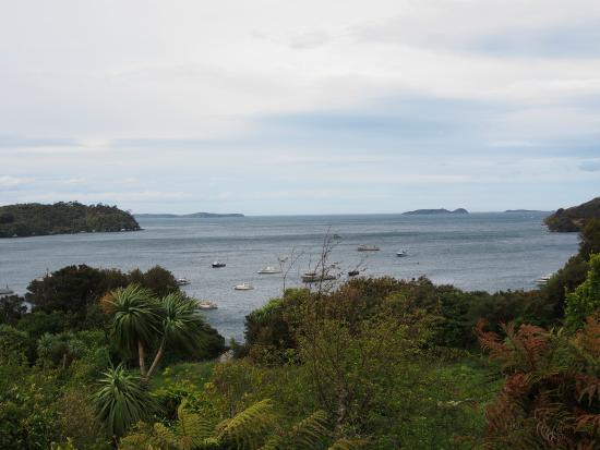Stewart Island Lodge : Amazing Sea view from lodge