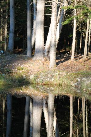 Evasion Gite et Refuges: Le petit lac