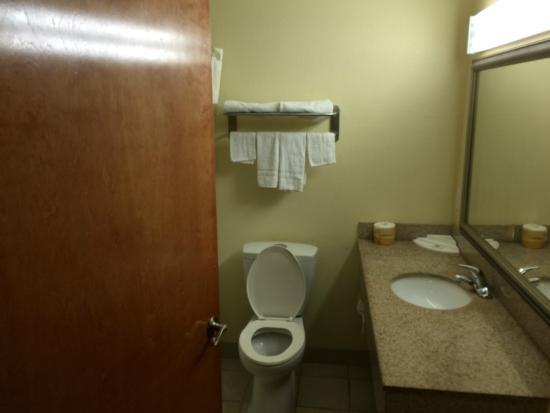Motel 6 New Orleans - near downtown : Bathroom