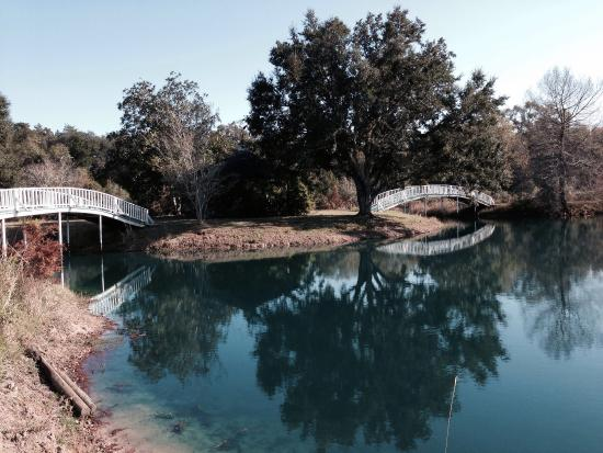 BlissWood Bed and Breakfast Ranch: Enchanted lake