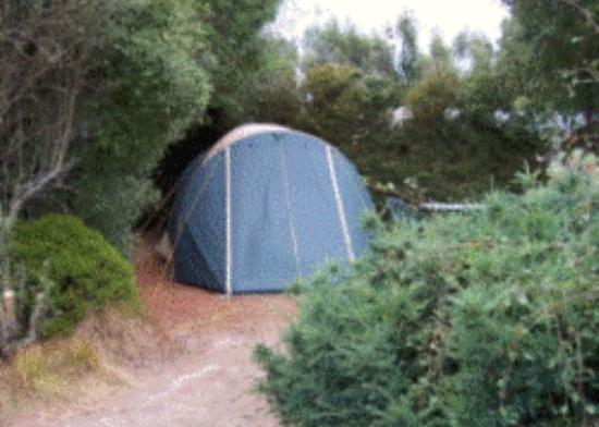 Wai-Natur Naturist Park : A cosy camping spot