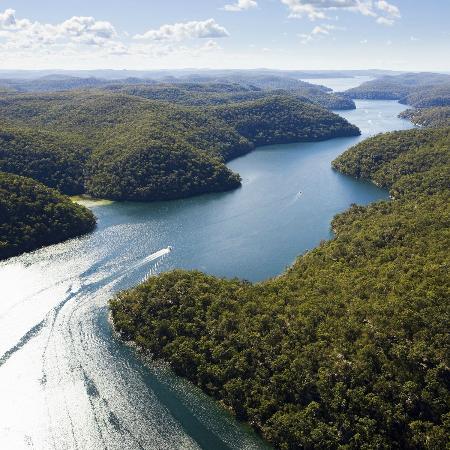 Sydney Outback