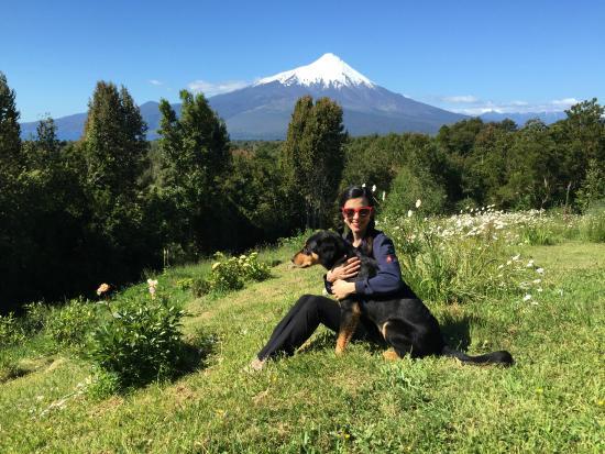 Fox Hill Bed & Breakfast: Osorno volcano