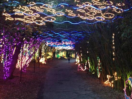 Christmas In Lights Event At Bellingrath Gardens Picture